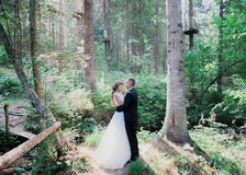 Los jóvenes hermosos casados juntan la situación que abraza en el bosque Foto de archivo libre de regalías
