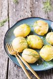 Los jóvenes hirvieron las patatas con eneldo y aceite de oliva Imagen de archivo libre de regalías