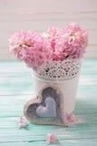 Los jacintos rosados frescos florecen en cubo y corazón decorativo encendido Foto de archivo