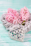 Los jacintos rosados frescos florecen en la guirnalda y el corazón decorativo Fotos de archivo