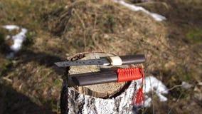 Los japoneses tradicionales ponen en cortocircuito la espada con la borla roja que miente en tocón almacen de video