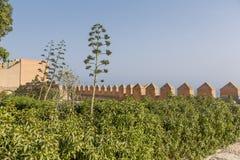 Los jardines de Alcazaba Imagenes de archivo
