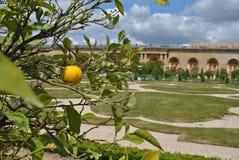 los jardines de Versalles Imagen de archivo libre de regalías