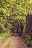 Los jardines del paisaje adyacente al bosque Fotos de archivo libres de regalías