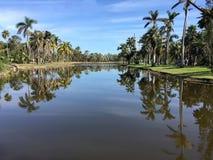 Los jardines hermosos rodean un lago en los jardines de Fairchild imagen de archivo libre de regalías