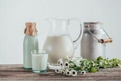 los jarros, la botella y el vidrio de leche fresca con la manzanilla florece Foto de archivo