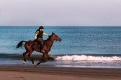Los jinetes montan a caballo en la playa Puesta del sol Paisaje marino Fotos de archivo