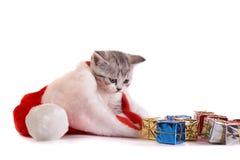 Los juegos del gatito con los regalos Foto de archivo