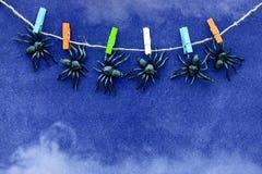 Los juguetes de goma negros de la araña cuelgan en pinzas coloridas en fondo azul de papel del terciopelo con humo Concepto de Ha imagen de archivo