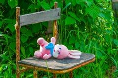 Los juguetes suaves del bebé pican el conejo que miente en una silla vieja en el verano Foto de archivo libre de regalías
