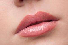 Los labios del primer construyen zona Imágenes de archivo libres de regalías