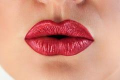 Los labios rojos apasionados fruncen para arriba imagen de archivo libre de regalías