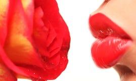 Los labios y se levantaron Imágenes de archivo libres de regalías