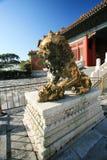 Los leones del bronce del museo del palacio Fotos de archivo libres de regalías