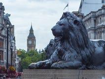 Los leones en Trafalgar Square Londres y reina Elizabeth Tower fotografía de archivo