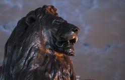 Los leones famosos en Trafalgar Square Londres en la noche Imágenes de archivo libres de regalías