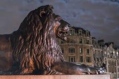 Los leones famosos en Trafalgar Square Londres en la noche Fotos de archivo libres de regalías