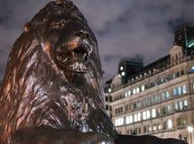 Los leones famosos en Trafalgar Square Londres en la noche Fotos de archivo