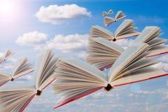 Los libros están volando Foto de archivo libre de regalías