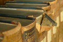 Los libros viejos en la biblioteca con el ` s del león firman fotografía de archivo libre de regalías