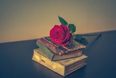 Los libros viejos y subieron Fotos de archivo