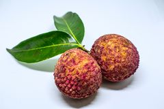 Los lichis dulces dan fruto con cierre para arriba en el fondo blanco fotos de archivo libres de regalías