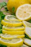 Los limones del corte con las hojas de la ensalada verde se cierran recientemente para arriba Imagen de archivo