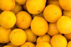 Los limones se cierran para arriba Foto de archivo