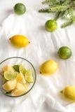 Los limones y las cales con el abeto ramifican en el fondo blanco Fotos de archivo libres de regalías