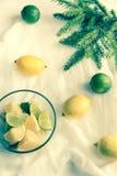 Los limones y las cales con el abeto ramifican en el fondo blanco Foto de archivo
