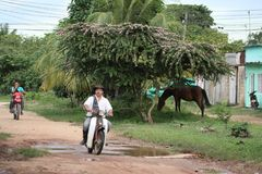 Los locals en las calles de la ciudad Foto de archivo libre de regalías