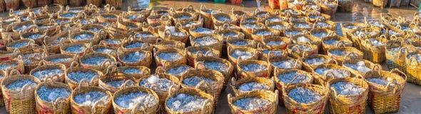 Los logros de la pesca de la anchoa de la cesta de pescadores foto de archivo libre de regalías
