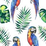 Los loros grandes amarillos de la selva hermosa linda colorida brillante y azules tropicales con las hojas de palma verdes modela Foto de archivo libre de regalías