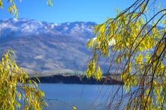 Los lugares del paraíso en Nueva Zelanda/soporte cocinan a National Park Foto de archivo