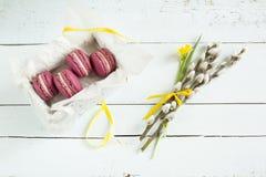 Los macarrones franceses carmesís dulces con el sauce de la caja, del narciso (narciso) y de gatito en luz teñieron el fondo de m Fotos de archivo libres de regalías