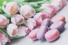 Los macarrones rosados y violetas, primavera florecen, los tulipanes, fondo del pastel de la oferta Mañana romántica, regalo, pre foto de archivo libre de regalías