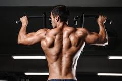 Los man's del músculo trasero apoyan imagen de archivo