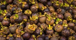 Los mangostanes maduros con color púrpura hermoso vendieron en mercado del traditonal en Bogor Indonesia Foto de archivo