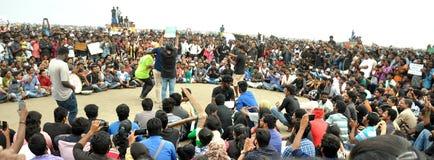 Los manifestantes de Jallikattu se mantienen firmes: el 'We'll va a casa solamente después que el SC levanta la prohibición Fotos de archivo