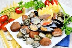 Los mariscos crudos llamaron fasolari con los mejillones y las almejas Imagen de archivo libre de regalías