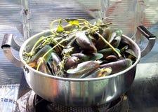 Los mejillones cocieron al vapor con las verduras en un pote del acero inoxidable Imágenes de archivo libres de regalías