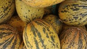Los melones se alinearon en el colmado imagenes de archivo