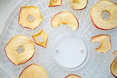 Los microprocesadores teñidos frescos de la manzana se prepararon en un secador casero de la fruta y verdura Concepto vegetariano imagen de archivo libre de regalías