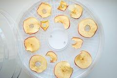 Los microprocesadores teñidos frescos de la manzana se prepararon en un secador casero de la fruta y verdura Concepto vegetariano imágenes de archivo libres de regalías
