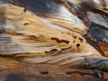 Los modelos pesadamente erosionados de la piedra arenisca en Sydney abrigan el acantilado fotos de archivo libres de regalías