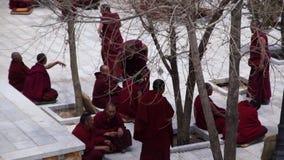 Los monjes discuten en el monasterio de los sueros - Tíbet almacen de metraje de vídeo