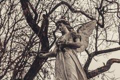 Los monumentos antiguos de las piedras sepulcrales del cementerio de las bebidas espirituosas del fantasma del misterio del misti foto de archivo