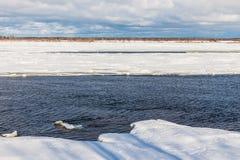 Los morones y las masas de hielo flotante en el río del invierno foto de archivo libre de regalías