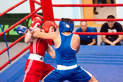 Los muchachos compiten en el boxeo Foto de archivo