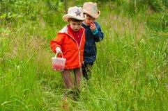 Los muchachos con el cubo de fresas en el prado Imagenes de archivo